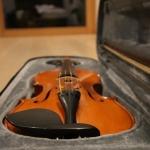 Prodam violino
